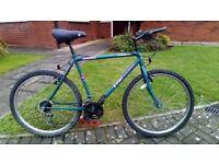 Cheap but Not Nasty Mountain Bike £45