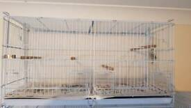 Double cages with divider
