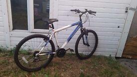 *amazing Muddyfox mountain bike *
