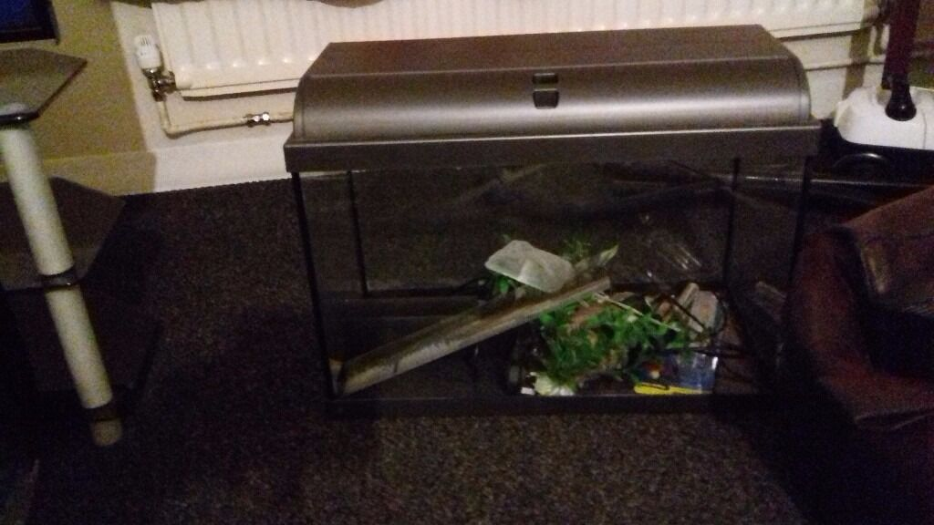 4 fish tanks with all accessories