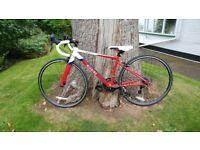 "Superb Wiggins Rouen Junior Road Bike 650c. 24"" wheel. Sadly never used. Cost £300 a few months ago"