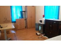 One Large Double Room is available for Single (Professional) Person in Eastham, NewhamTownhall.