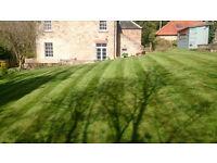 Eddleston Home & Garden Maintenance