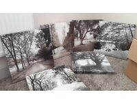 Six canvas pictures