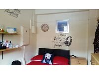 Single room to rent in Putney- Barnes area, bill included