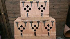terrier box