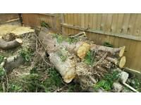 Feed your Log burners FREE WOOD