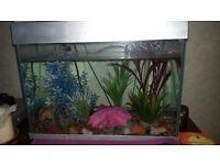 Fish tank and ornaments