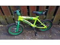 Boys bike age 3 to 5 make silver fox in green.