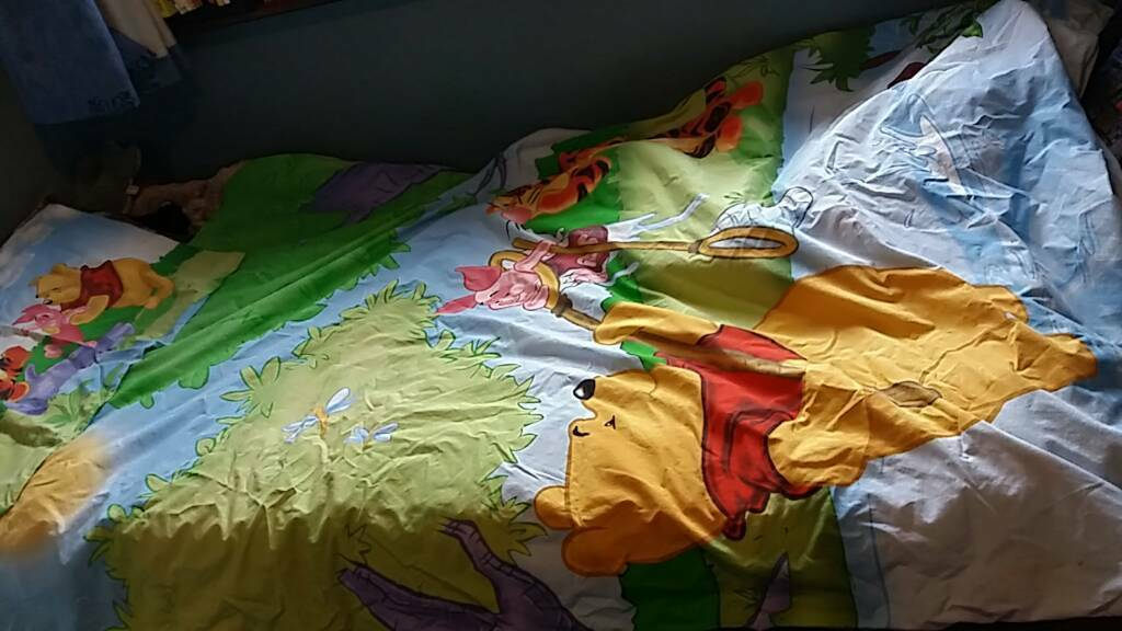 Winnie the pooh single quilt & pillowcase