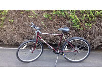 top quality expensive Raleigh nitro unisex mountain bike selling very v cheap for quick quick sale