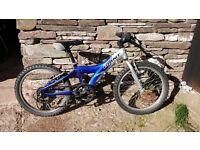 Kids Giant TRX Mountain Bike
