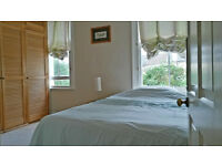 * * SHORT LET for March : Lovely Mid Sized Double Room looking over back garden (Single Prof.) * *