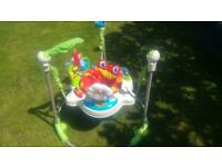 Fisherprice Rainforest Jumperoo - great condition, clean and ready for it's next home!