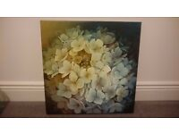 Canvas Art Yellow White Blue Hydrangea Flower Close Up. Excellent Condition