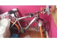 Two bikes need them gone ASAP !!!