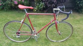 Vintage Raleigh Pro racing bike