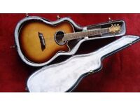 Saehan 6 string Semi-acoustic guitar and case.