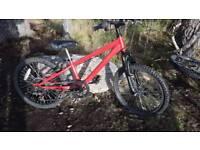 No9 Boys mountain bike