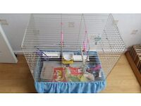 Bird cage fully equiped with all accessories