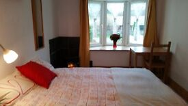 Sunny quiet room with ensuite bathroom near Beaumaris