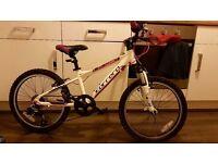 "Carrera Luna Junior Mountain Bike - 20"""