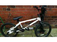 BMX - Xrated bike