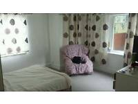 Perfect,cosy and large room for a single working professional. Fast WiFi and TV included.