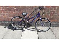 bike and lock