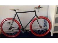 Single speed bike. Large Frame