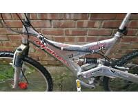 Large mens mountain bike