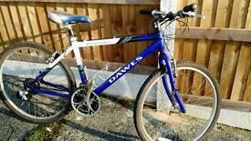 "Dawes Mountain Bike 19"""