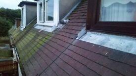 Power Washing: Patios, Drives, Walls, lockblock -- Roof repairs: moss and algae hand removal
