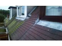 Power Washing: Patios, Drives, Walls, lockblock -- Roof repairs: moss and algae hand removal
