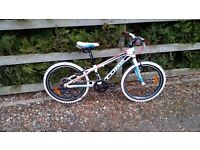 Cube 200 Childs Mountain Bike