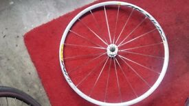 Mavic aksium front wheel 700c