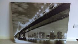 Large wall canvas/picture