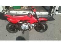 Pit bike crf 50 replica