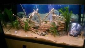 Sunken ship fish centerpiece tank ornament