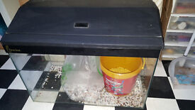 goldfish tank and filters , lights and accessories
