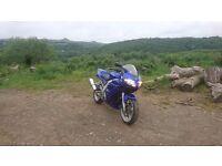 Suzuki Sv650 in stunning blue !!!