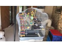 Budgie/Bird cage, stand and accessories