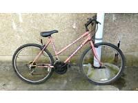 Probike vixen ladies bike