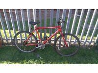 Man saracen mountain bike