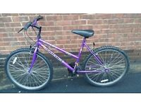 Womens Ladies Girls Mountain Bike bicycle Rampage universal
