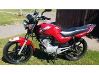 Yamaha YBR 125cc - learner legal - great commute bike. 10 months MOT alarmed.