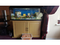 4FT Fish tank with cabinet