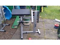 Body Solid Bicep / Tricep Machine