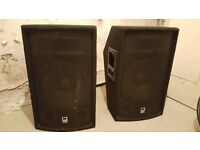 2 Large Class D High Power Audio Speakers