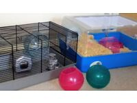 DWARF HAMSTER CAGES & ACCESSORIES
